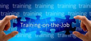 Training on the job5